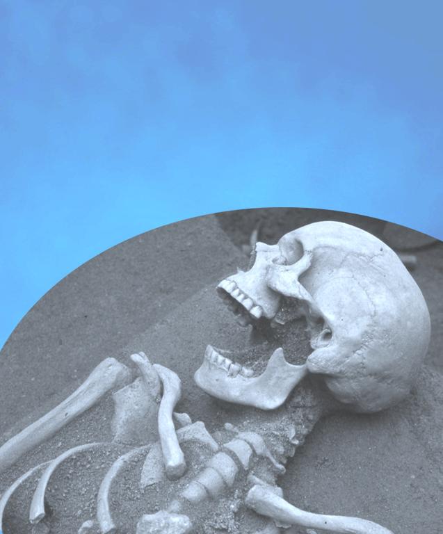 azulclaro_esqueleto.2b